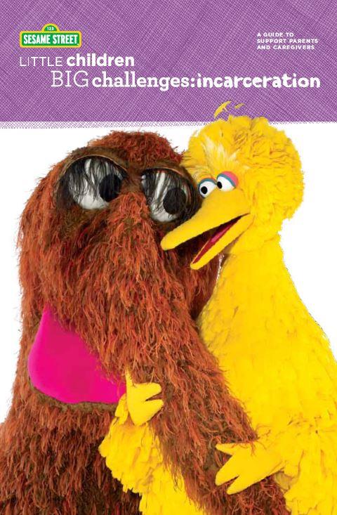 Sesame Street Little Children Big Challenges image.JPG